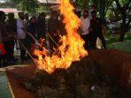 Polres Payakumbuh melakukan pemusnahan barang bukti narkotika jenis ganja seberat 98.380 gram